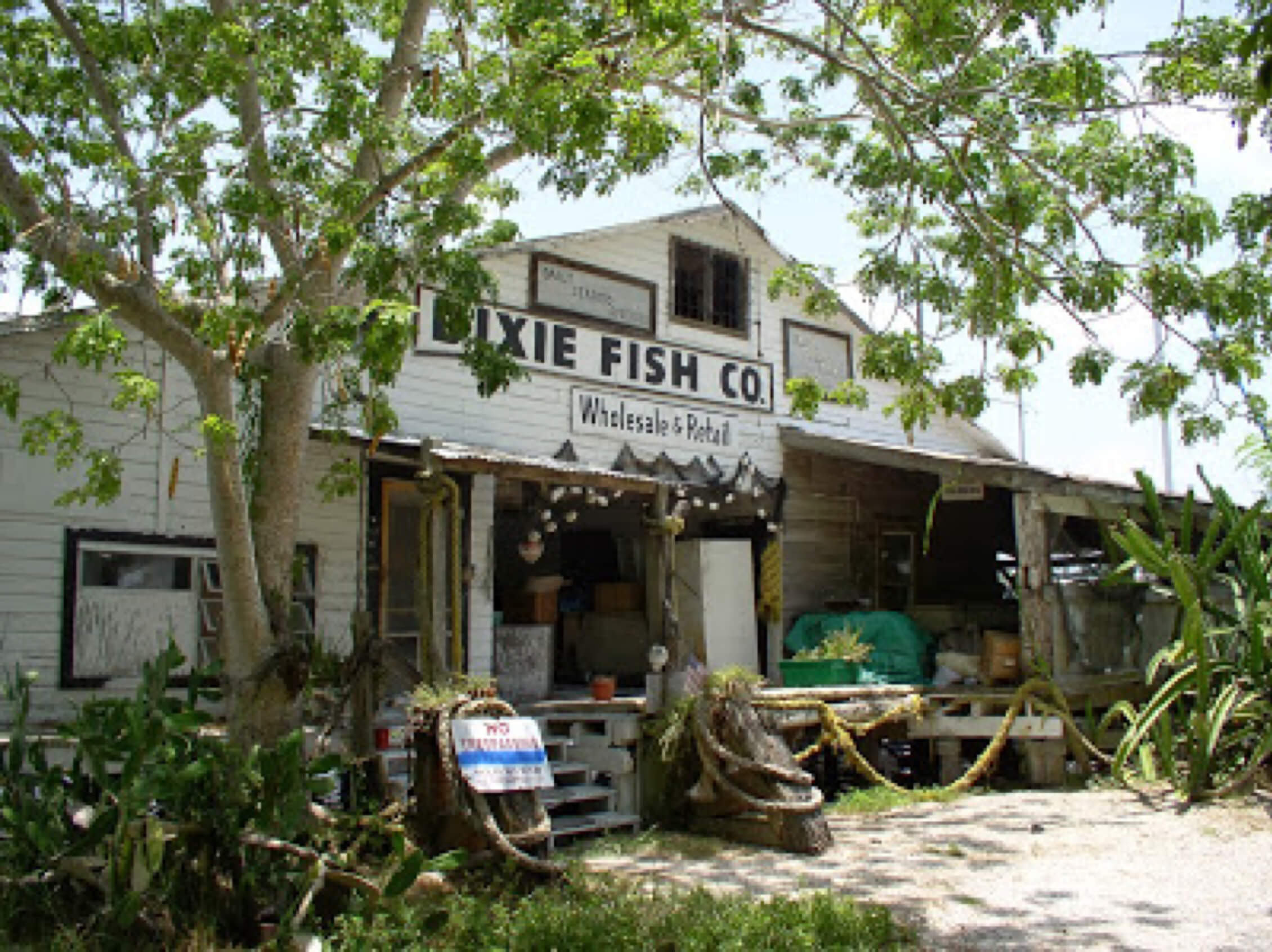 The dixie fish co an original florida fish house happy for Fish restaurant fort myers